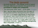 the biotic pyramid