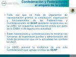 confederaci n y federaciones al amparo de la lgsc