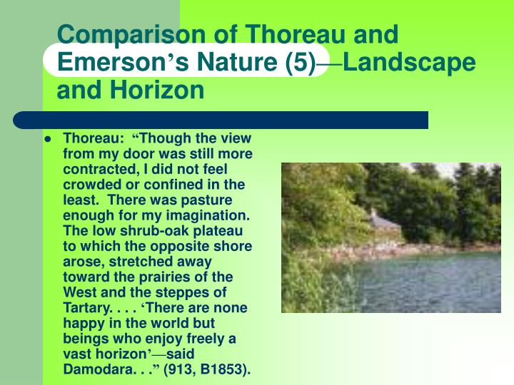 comparing and contrasting emerson and thoreau Compare and contrast essay even though chris mccandless, from jon  krakauer's into the wild, and henry david thoreau shared similar reasons for.