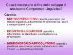 cosa necessario al fine dello sviluppo di una buona competenza linguistica