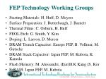 fep technology working groups
