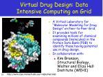 virtual drug design data intensive computing on grid