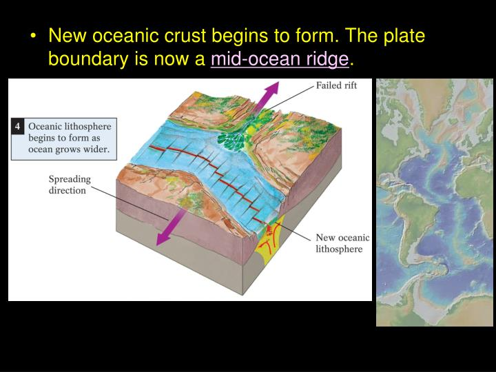 New oceanic crust begins to form. The plate boundary is now a