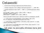 ciekawostki33