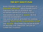 the not guilty plea