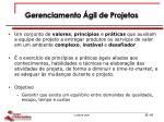 gerenciamento gil de projetos1