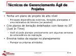 t cnicas de gerenciamento gil de projetos1
