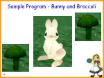 sample program bunny and broccoli