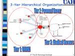 3 tier hierarchical organization