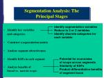 segmentation analysis the principal stages
