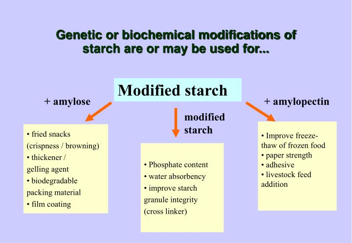 types of modified starch The most common types of modified food starch are made from ingredients like corn, wheat, potato, and tapioca typically labels will list the source from most modified starches are gluten free, except for those that use wheat starch as a base there is some controversy about whether modified wheat.