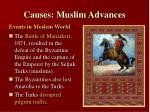 causes muslim advances