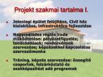 projekt szakmai tartalma i
