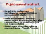 projekt szakmai tartalma ii
