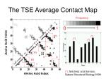 the tse average contact map