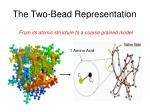 the two bead representation