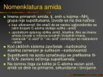 nomenklatura amida
