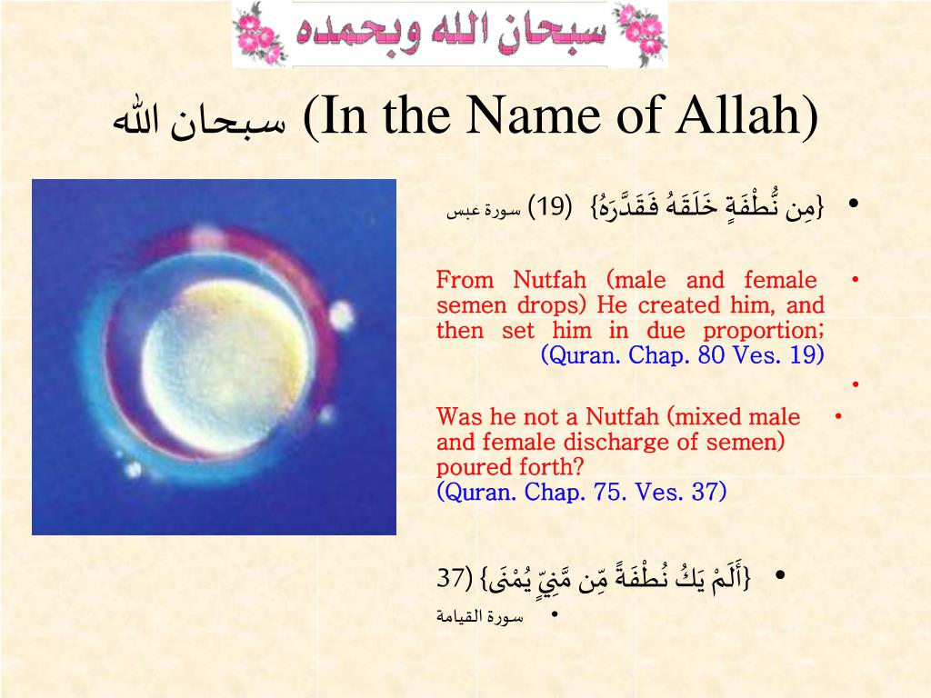 in the name of allah l.