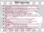 bibliography28