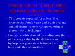 determination of energy value and energy benefits foregone continues