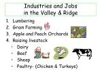 industries and jobs in the valley ridge