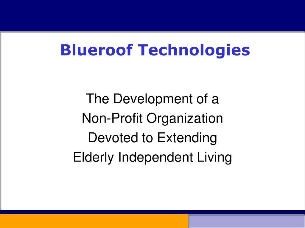 blueroof technologies l.