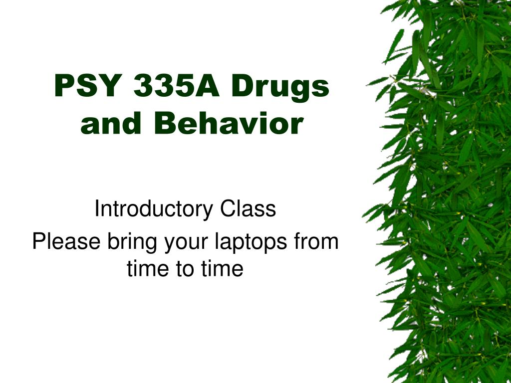 psy 335a drugs and behavior l.