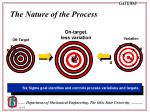 the nature of the process