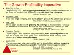 the growth profitability imperative