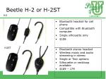beetle h 2 or h 2st