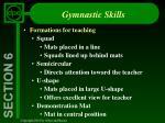 gymnastic skills17