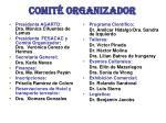 comit organizador
