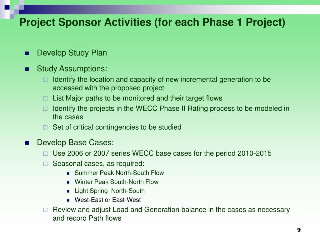 Project Sponsor Activities (for each Phase 1 Project)