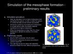 simulation of the mesophase formation preliminary results