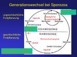 generationswechsel bei sporozoa