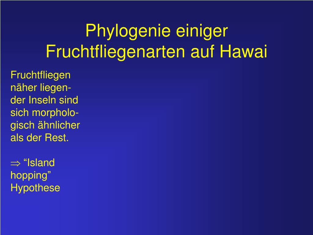 Phylogenetischer Artbegriff