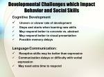 developmental challenges which impact behavior and social skills