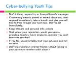 cyber bullying youth tips