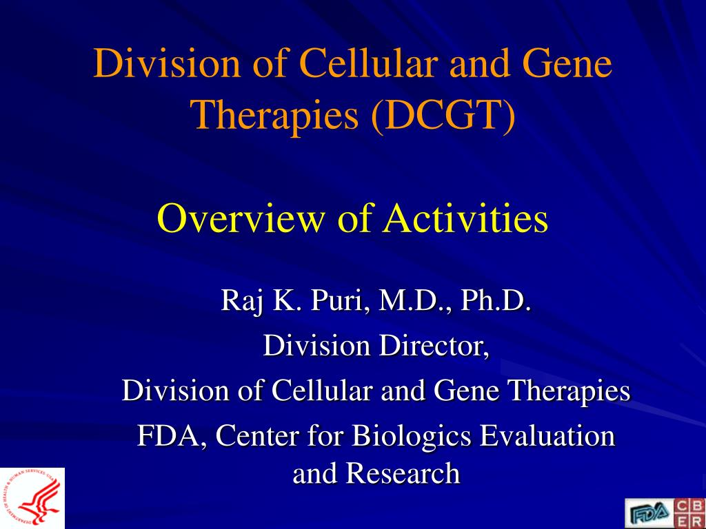 division of cellular and gene therapies dcgt overview of activities l.
