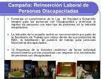 campa a reinserci n laboral de personas discapacitadas