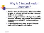why is intestinal health important