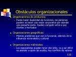 obst culos organizacionales116