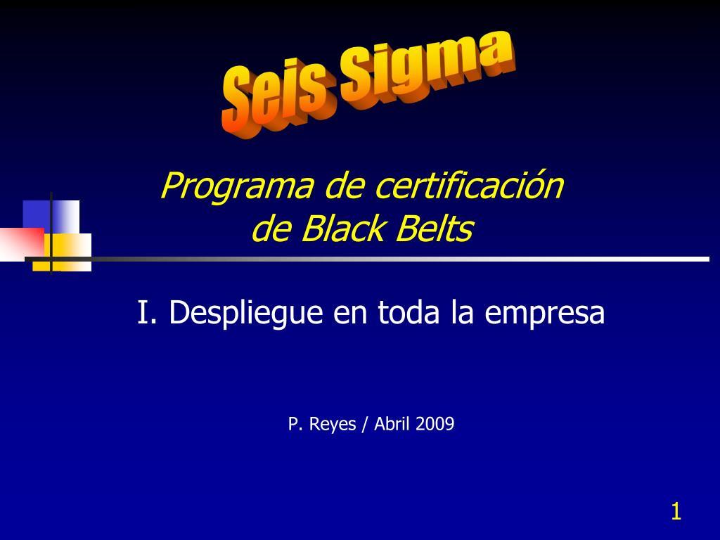 programa de certificaci n de black belts l.