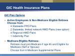 gic health insurance plans14