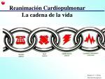 reanimaci n cardiopulmonar la cadena de la vida