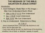 the message of the bible salvation in jesus christ2