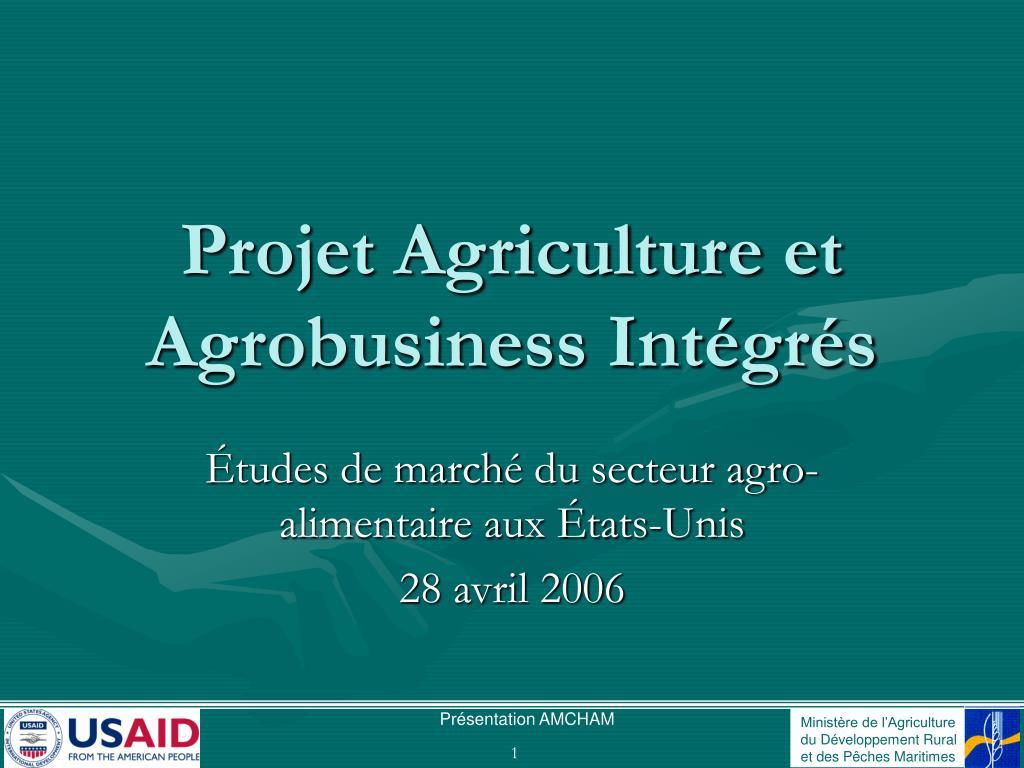 projet agriculture et agrobusiness int gr s l.