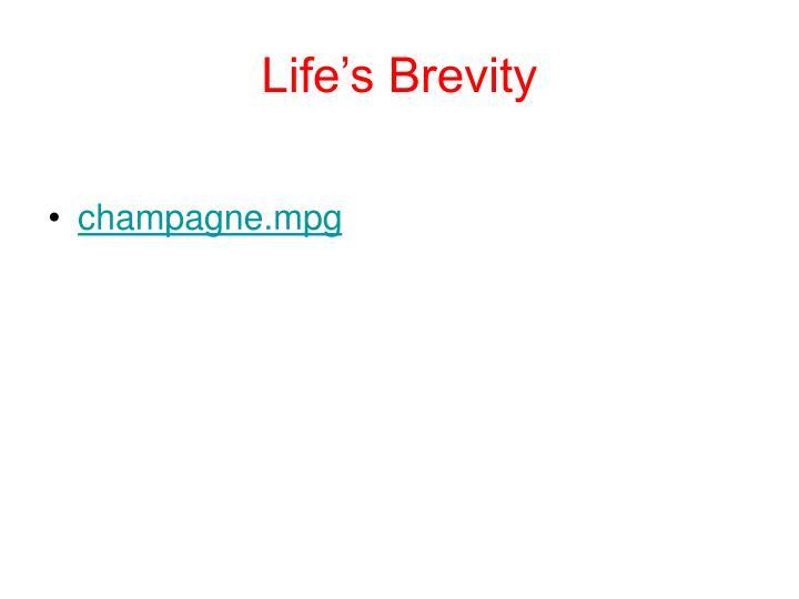 Life's Brevity
