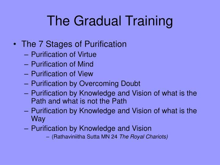 The Gradual Training