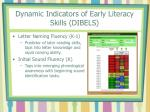 dynamic indicators of early literacy skills dibels